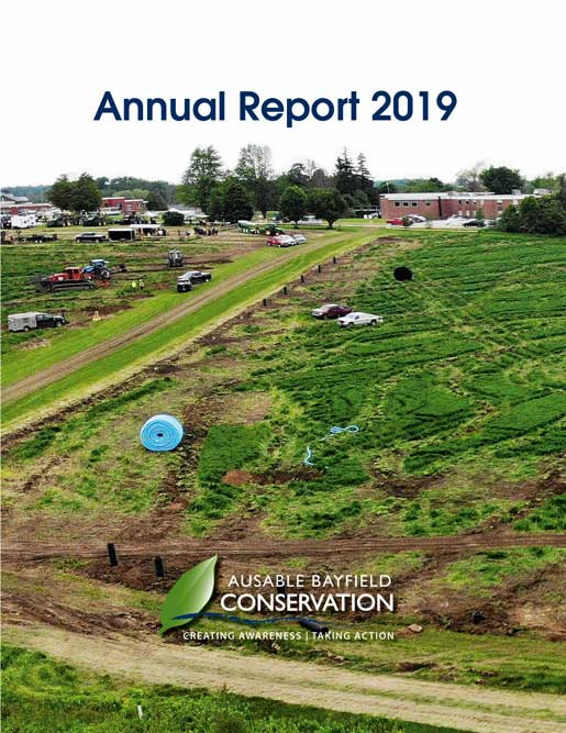 Cover photo for 2019 Annual Report
