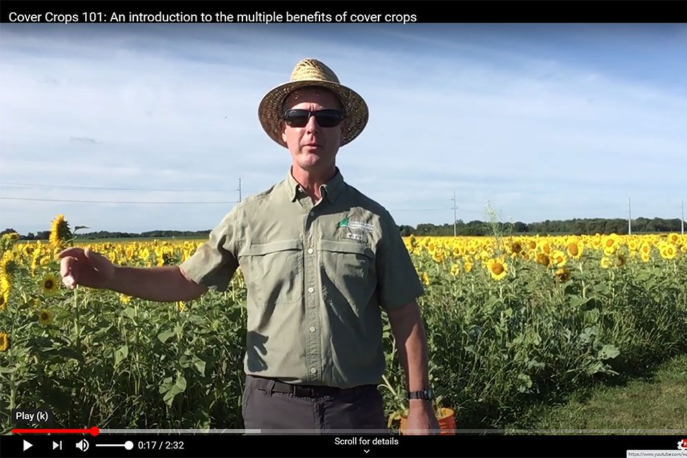 Ross Wilson, of Ausable Bayfield Conservation, talks about service crops in new video.